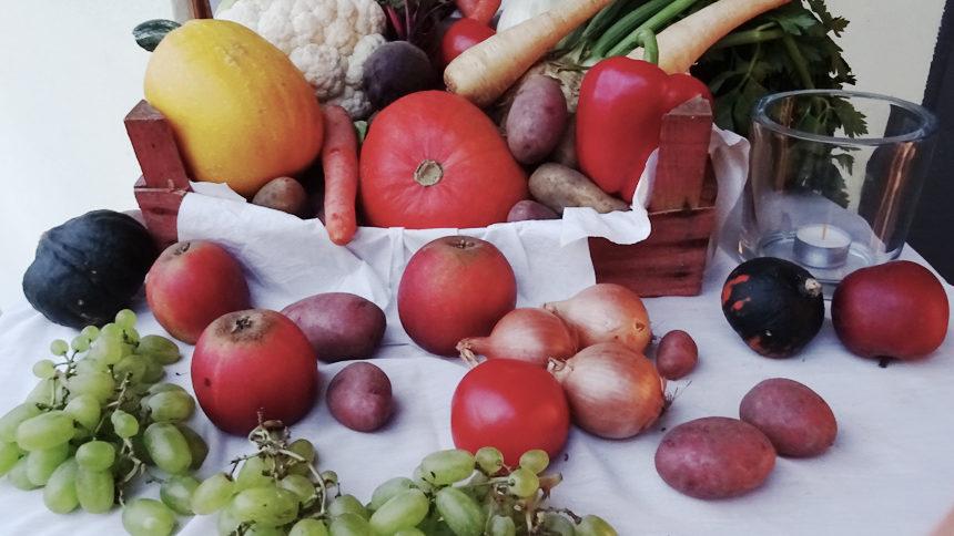 Obst und Gemüse drapiert für das Ernte Dank Fest im Kleingartenverein Große-Dahlkamp .eV.